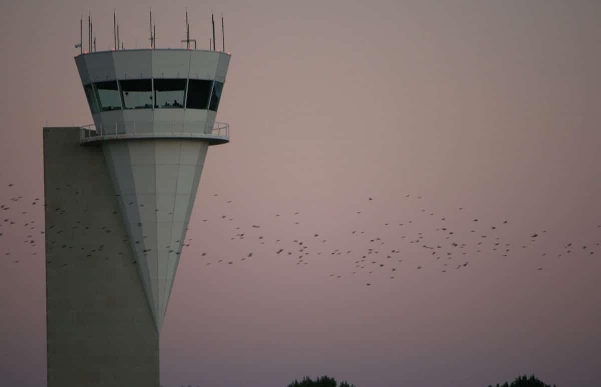 Alliance Airport 7